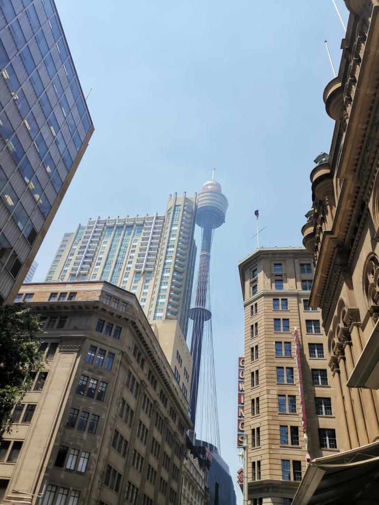 11月19日午後のシドニー
